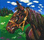 Pferde, Ponys