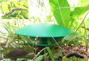 Schneckenfalle für den Garten